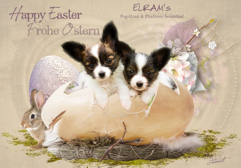 Happy Easter to all our friends all over the world