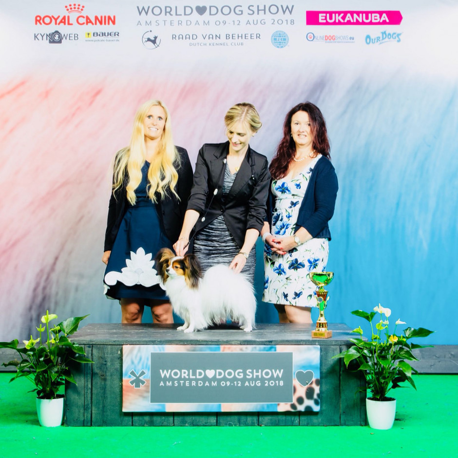 World Dog Show 2018, Amsterdam